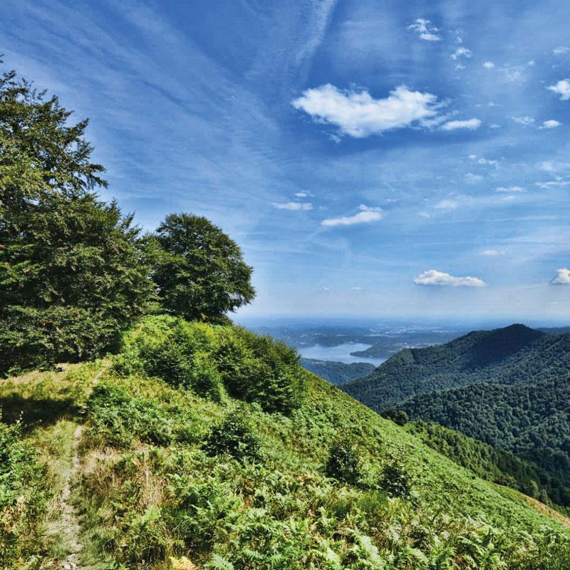 Itinerario bike Cesara - Alpe Sacchi