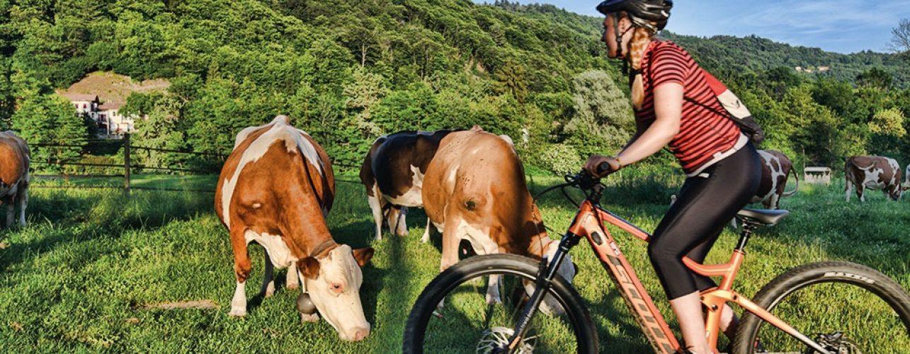 Itinerario bike indaco Ameno