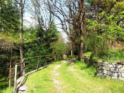 dove posso comprare belle scarpe outlet online Passeggiate ed Escursioni - Lago d'Orta Piemonte Italy